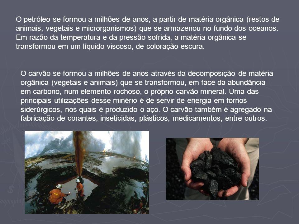 O petróleo se formou a milhões de anos, a partir de matéria orgânica (restos de animais, vegetais e microrganismos) que se armazenou no fundo dos oceanos. Em razão da temperatura e da pressão sofrida, a matéria orgânica se transformou em um líquido viscoso, de coloração escura.