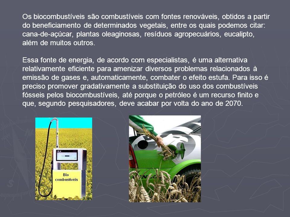 Os biocombustíveis são combustíveis com fontes renováveis, obtidos a partir do beneficiamento de determinados vegetais, entre os quais podemos citar: cana-de-açúcar, plantas oleaginosas, resíduos agropecuários, eucalipto, além de muitos outros.