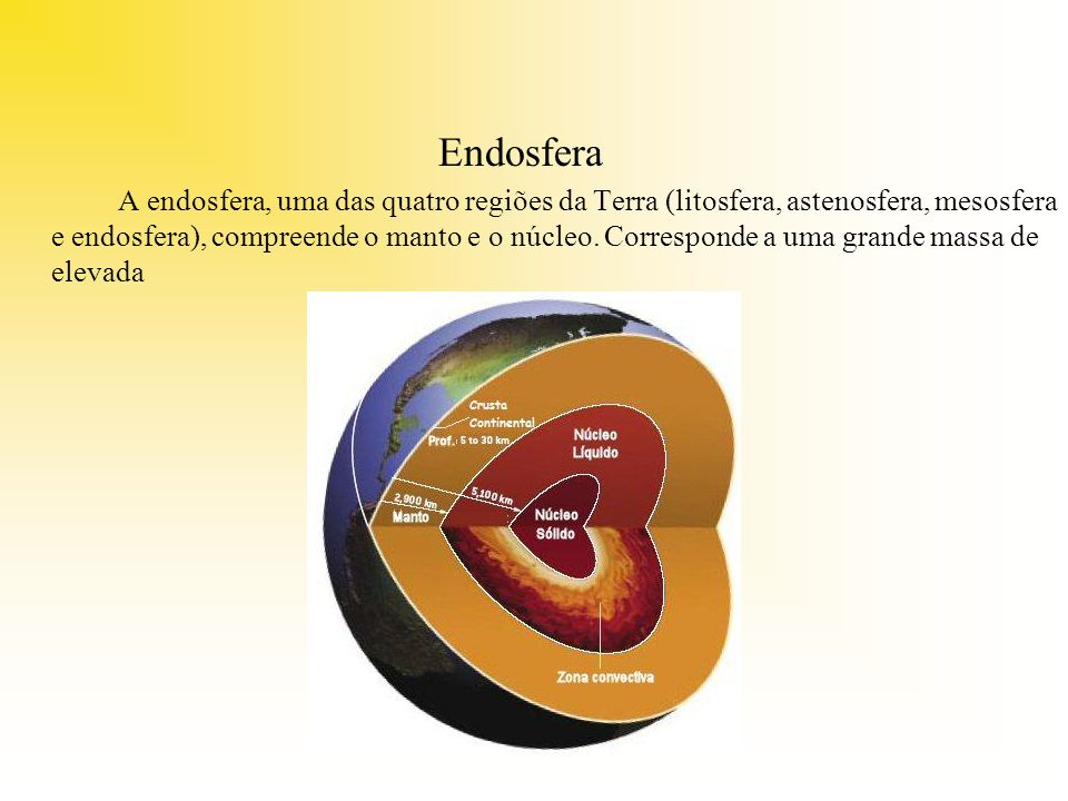 Endosfera
