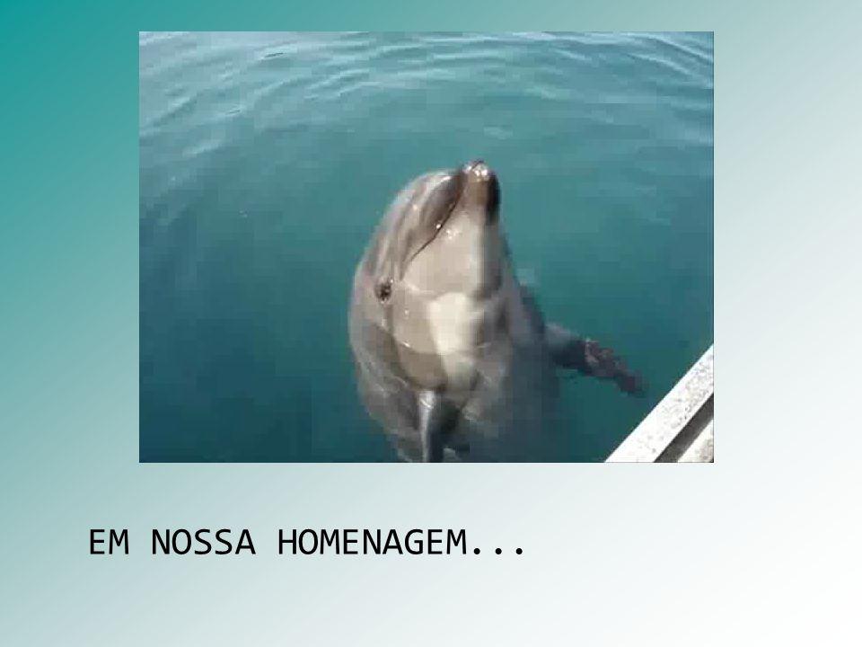 EM NOSSA HOMENAGEM...