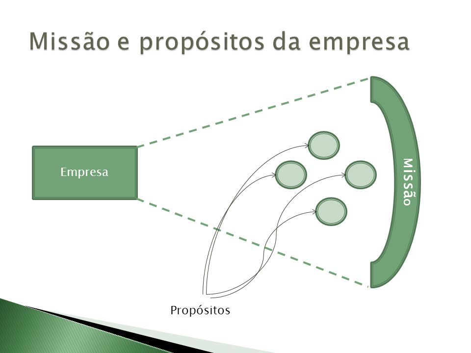 Missão e propósitos da empresa