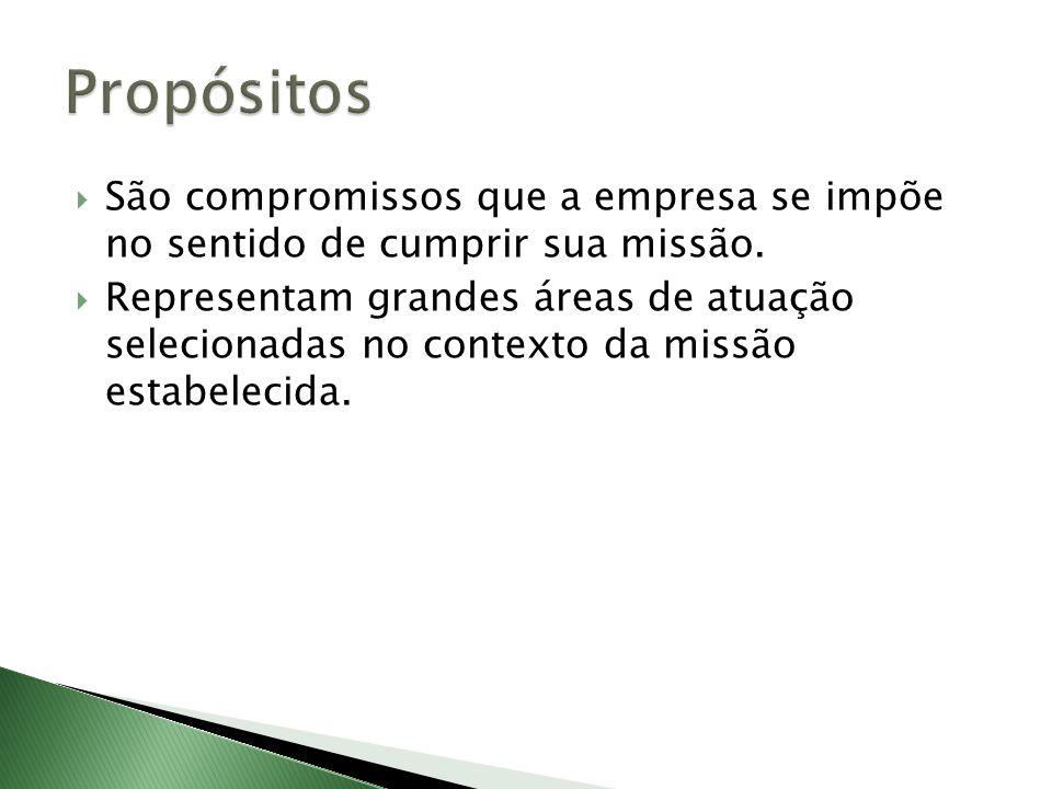 Propósitos São compromissos que a empresa se impõe no sentido de cumprir sua missão.