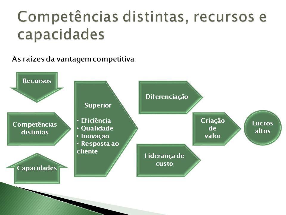 Competências distintas, recursos e capacidades