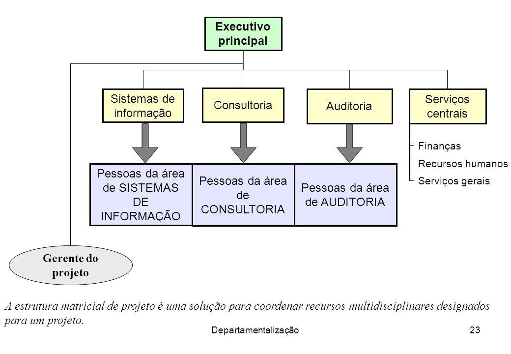 Sistemas de informação Consultoria Auditoria Serviços centrais