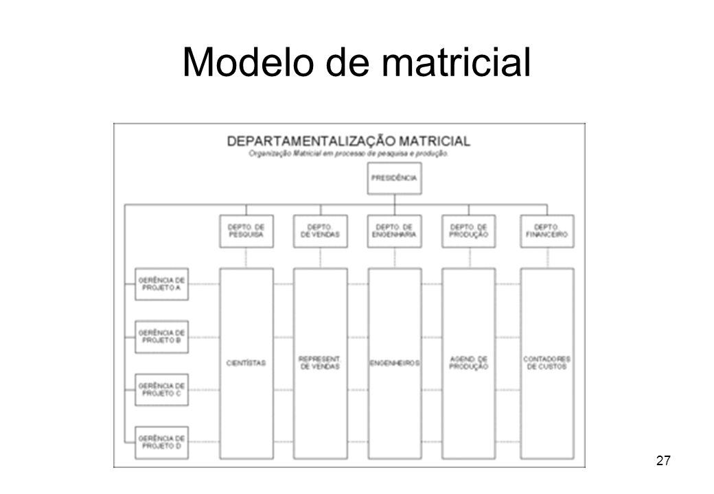 Modelo de matricial Departamentalização
