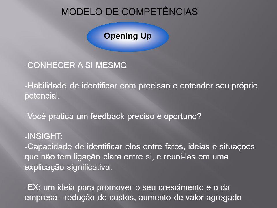 MODELO DE COMPETÊNCIAS
