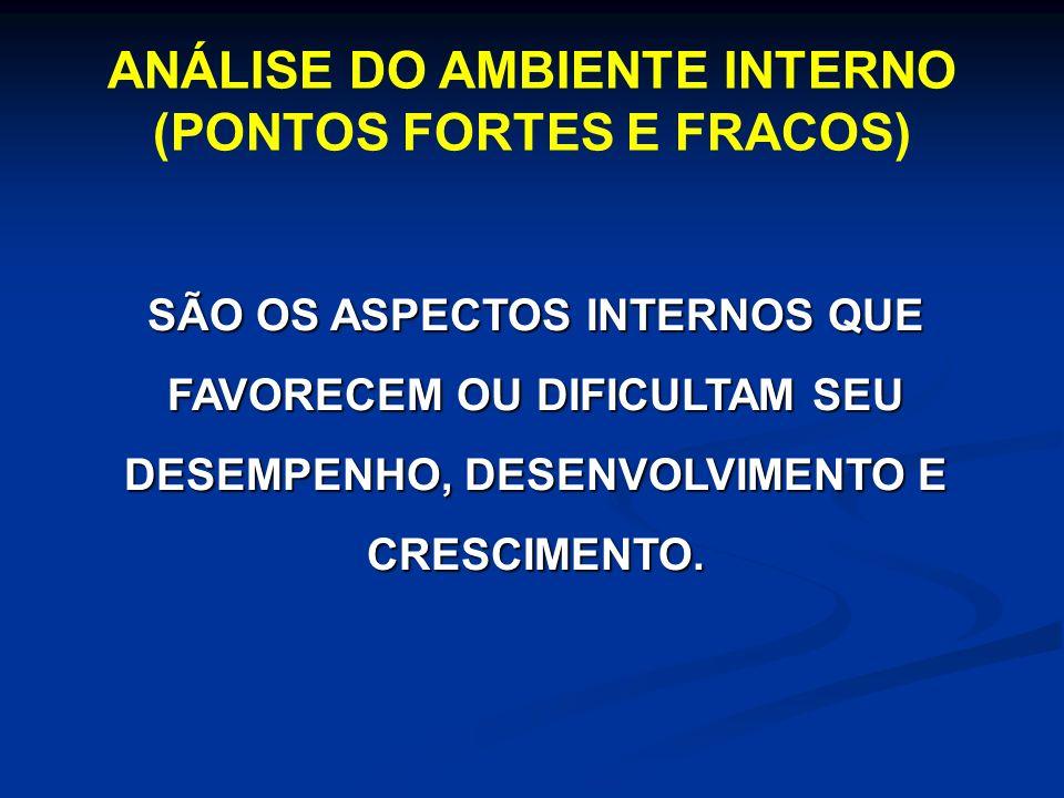 ANÁLISE DO AMBIENTE INTERNO (PONTOS FORTES E FRACOS)