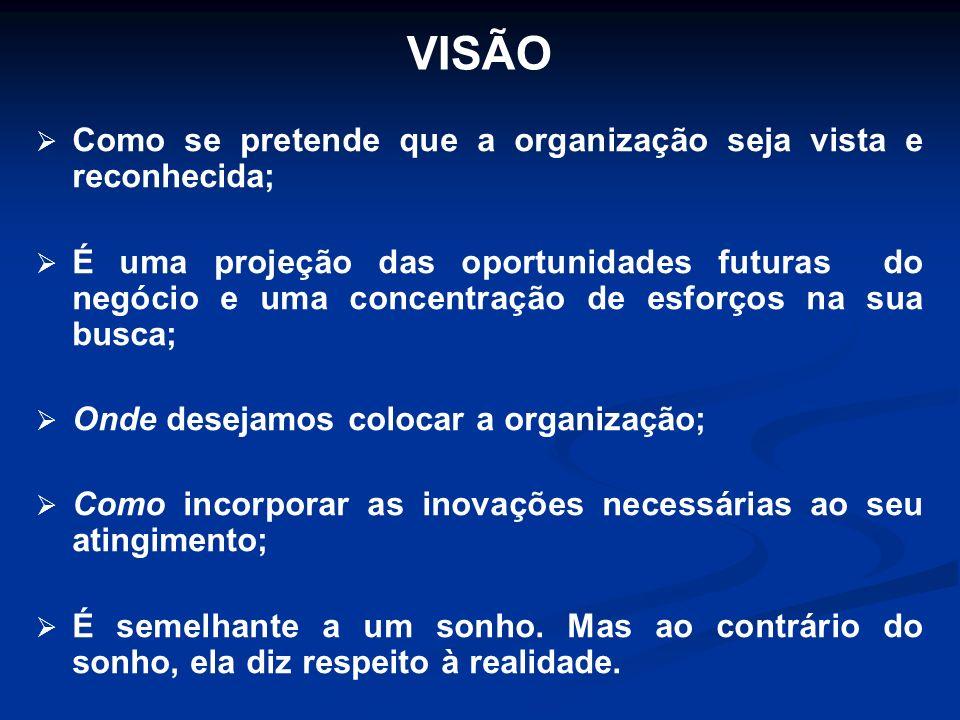 VISÃO Como se pretende que a organização seja vista e reconhecida;