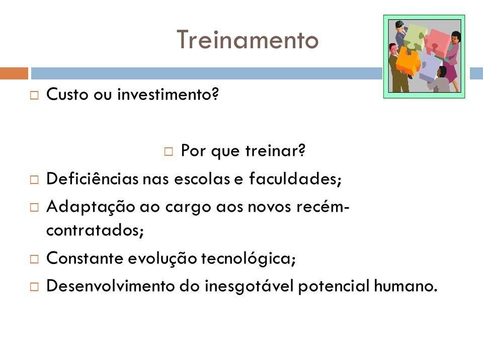 Treinamento Custo ou investimento Por que treinar