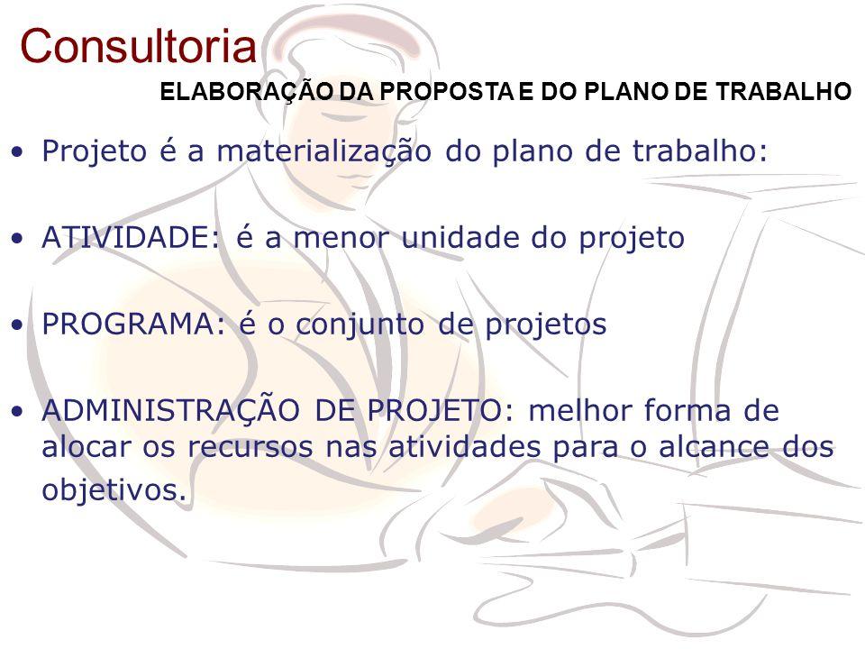 Projeto é a materialização do plano de trabalho: