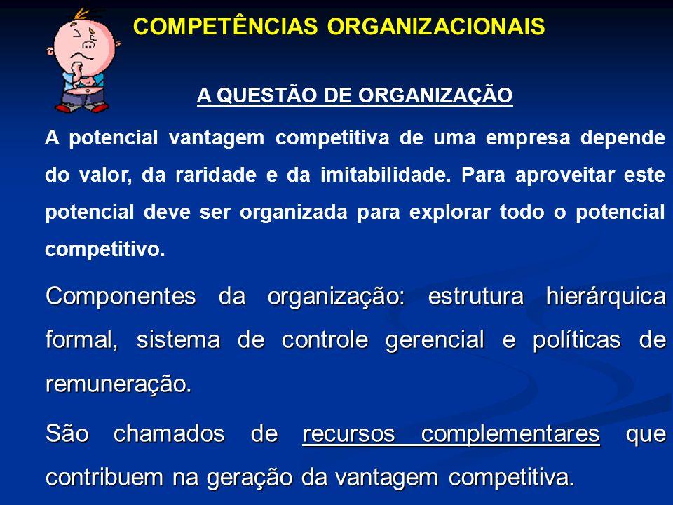 COMPETÊNCIAS ORGANIZACIONAIS A QUESTÃO DE ORGANIZAÇÃO