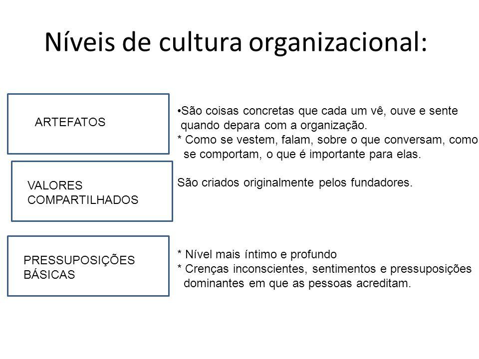 Níveis de cultura organizacional: