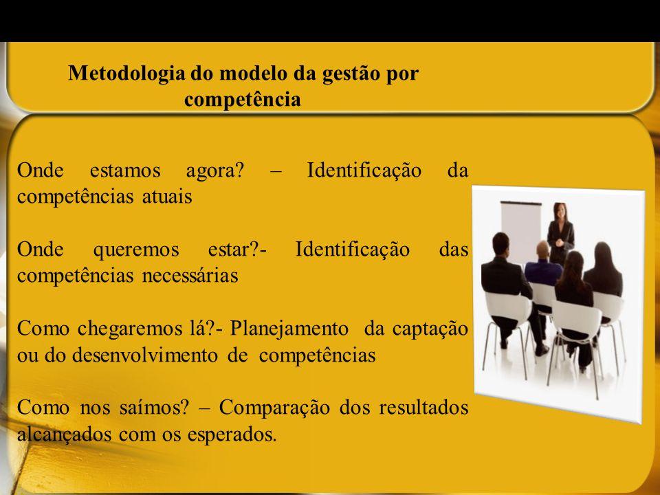 Metodologia do modelo da gestão por competência