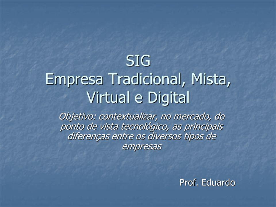 SIG Empresa Tradicional, Mista, Virtual e Digital