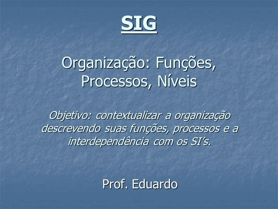 SIG Organização: Funções, Processos, Níveis Objetivo: contextualizar a organização descrevendo suas funções, processos e a interdependência com os SI's.