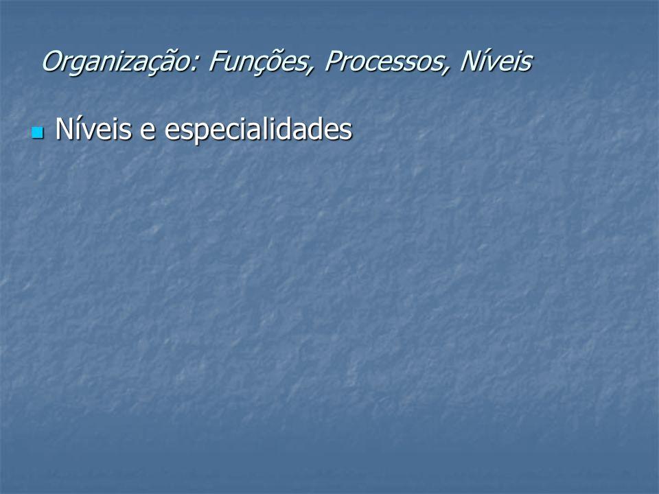 Organização: Funções, Processos, Níveis