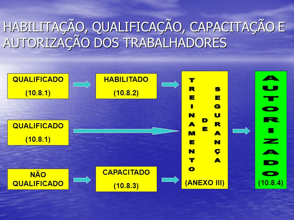 HABILITAÇÃO, QUALIFICAÇÃO, CAPACITAÇÃO E AUTORIZAÇÃO DOS TRABALHADORES