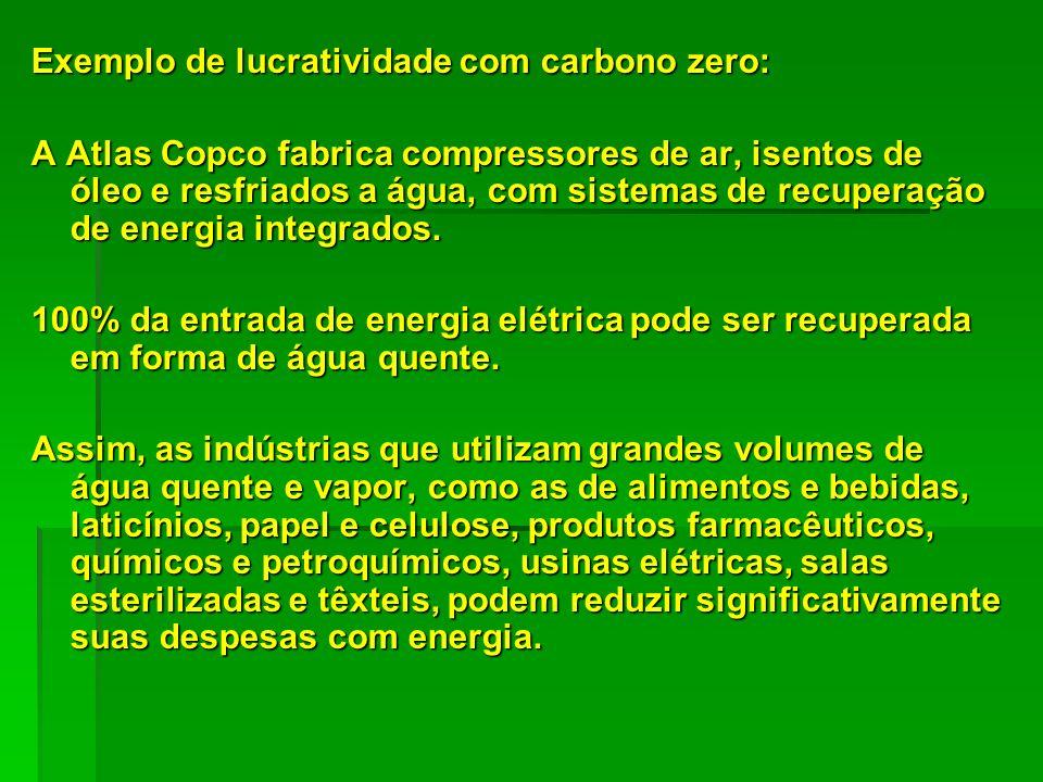 Exemplo de lucratividade com carbono zero: