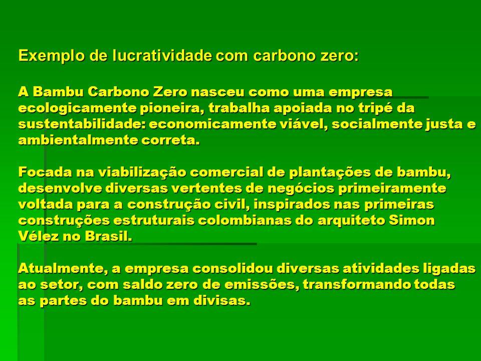 Exemplo de lucratividade com carbono zero: A Bambu Carbono Zero nasceu como uma empresa ecologicamente pioneira, trabalha apoiada no tripé da sustentabilidade: economicamente viável, socialmente justa e ambientalmente correta.