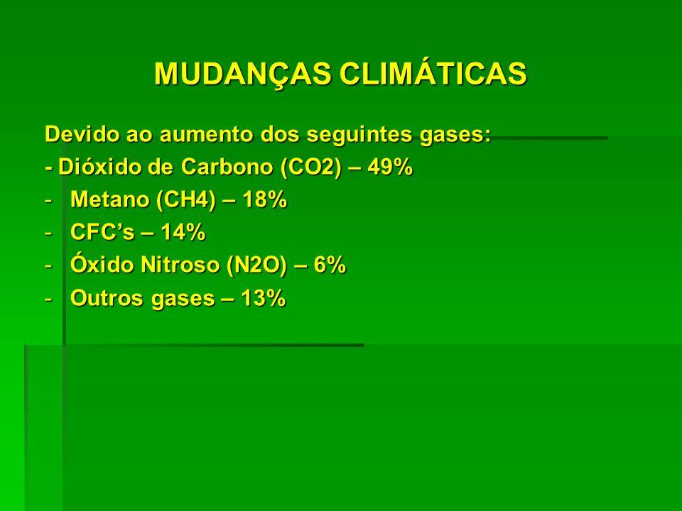 MUDANÇAS CLIMÁTICAS Devido ao aumento dos seguintes gases: