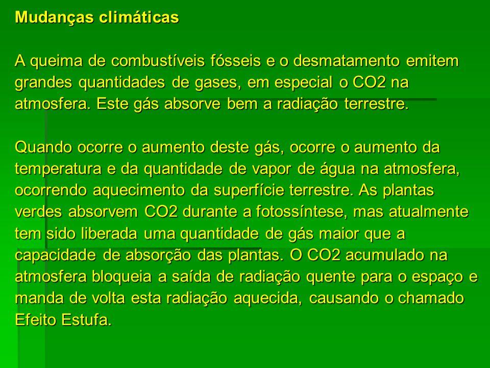 Mudanças climáticas A queima de combustíveis fósseis e o desmatamento emitem. grandes quantidades de gases, em especial o CO2 na.