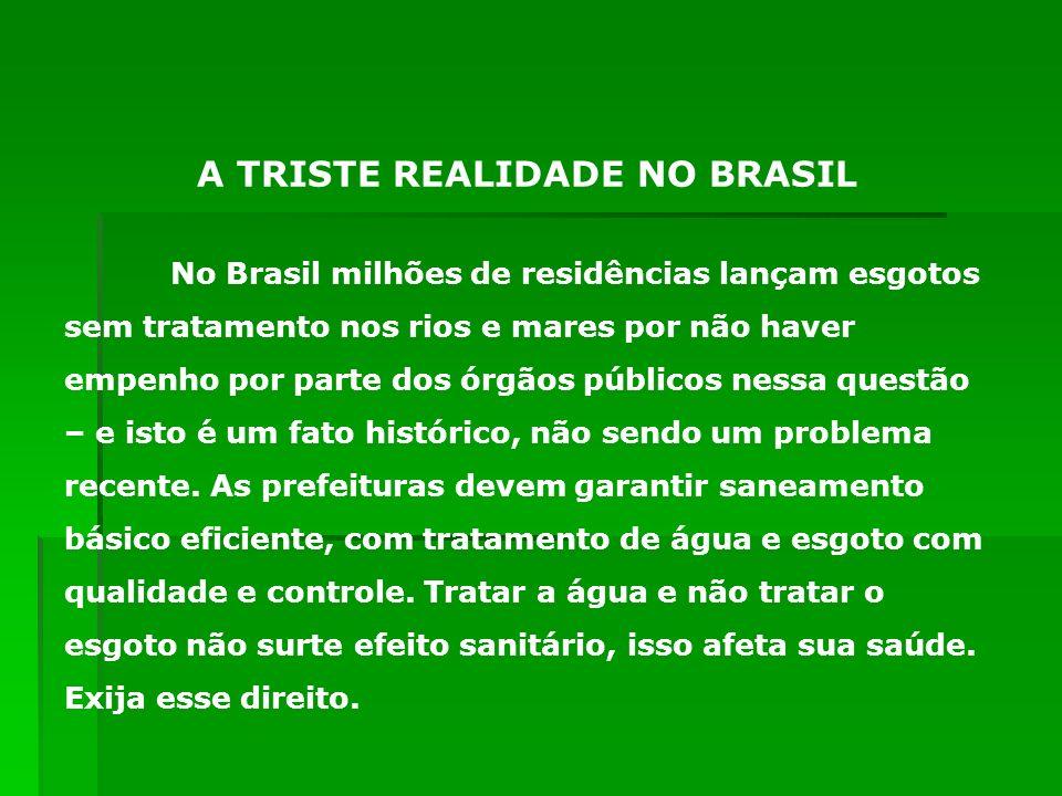 A TRISTE REALIDADE NO BRASIL