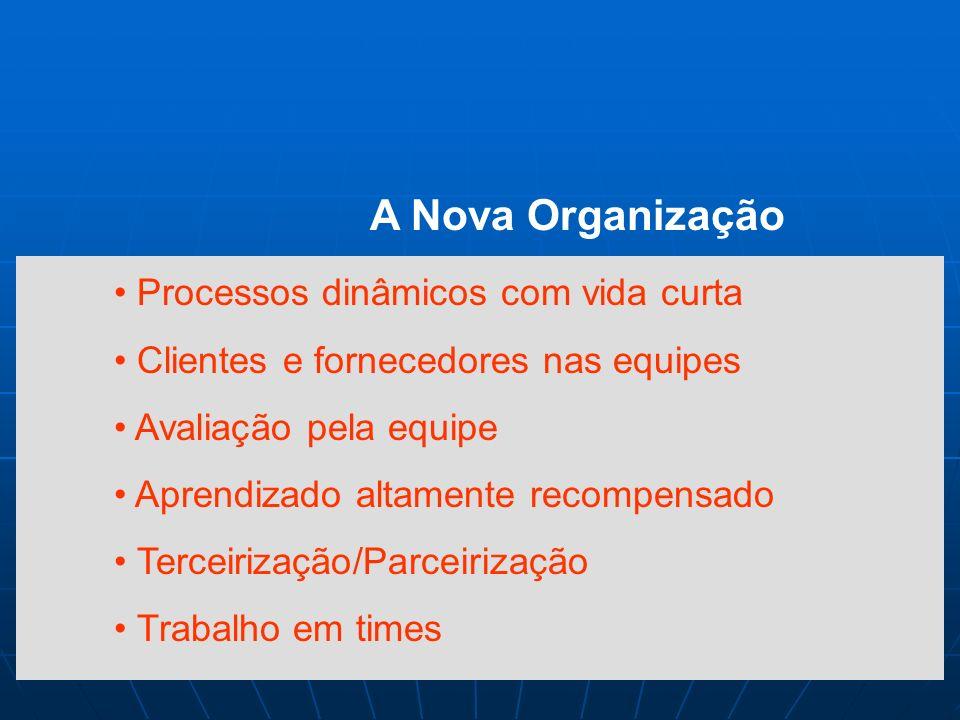 A Nova Organização Processos dinâmicos com vida curta