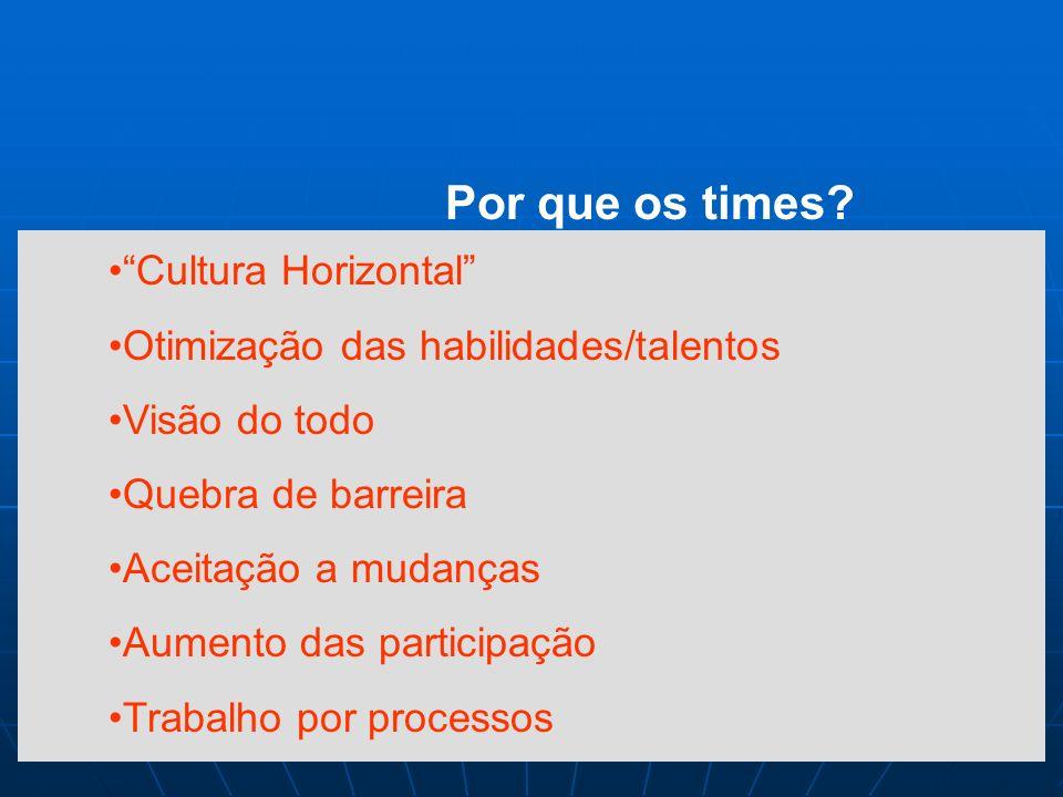 Por que os times Cultura Horizontal