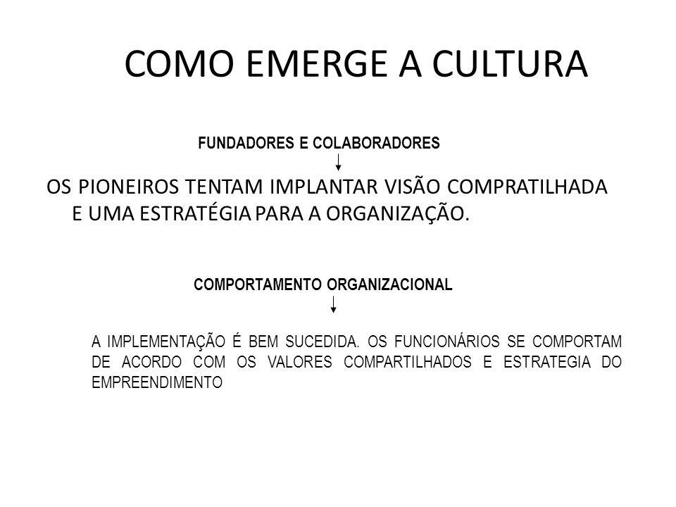 FUNDADORES E COLABORADORES COMPORTAMENTO ORGANIZACIONAL