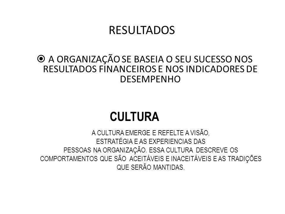RESULTADOS A ORGANIZAÇÃO SE BASEIA O SEU SUCESSO NOS RESULTADOS FINANCEIROS E NOS INDICADORES DE DESEMPENHO.