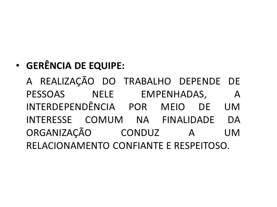 GERÊNCIA DE EQUIPE: