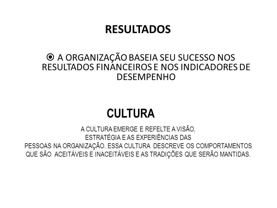 RESULTADOS A ORGANIZAÇÃO BASEIA SEU SUCESSO NOS RESULTADOS FINANCEIROS E NOS INDICADORES DE DESEMPENHO.