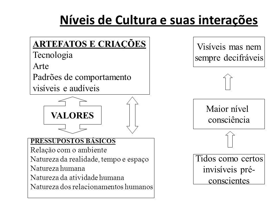 Níveis de Cultura e suas interações
