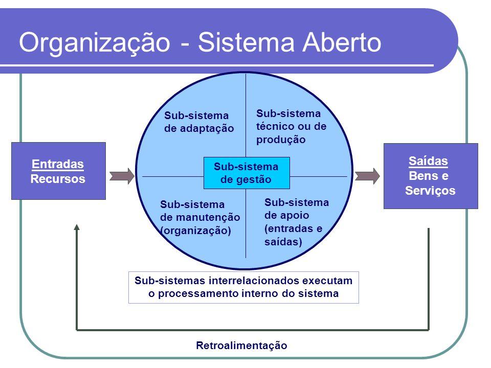 Organização - Sistema Aberto