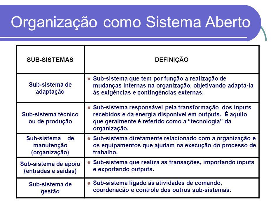 Organização como Sistema Aberto