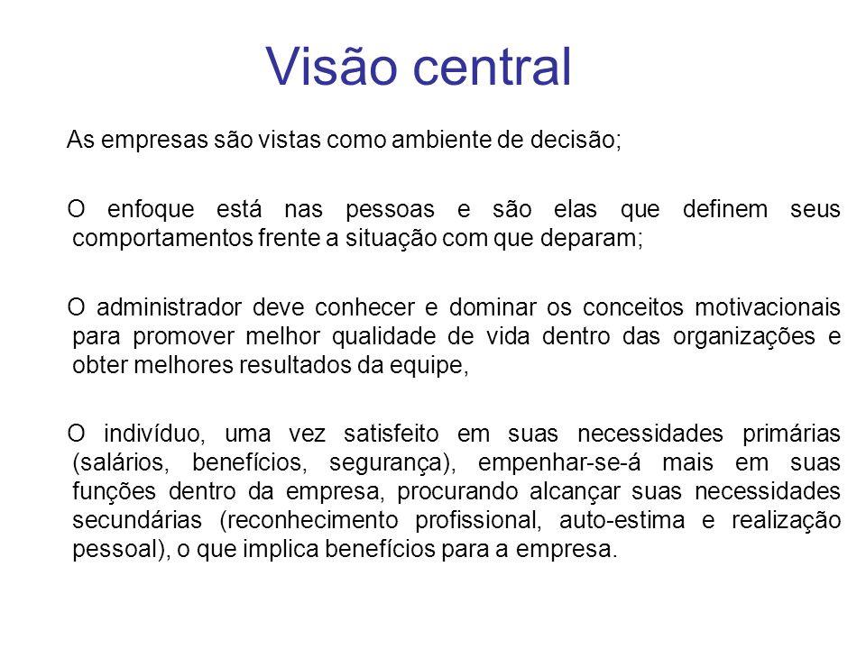 Visão central As empresas são vistas como ambiente de decisão;