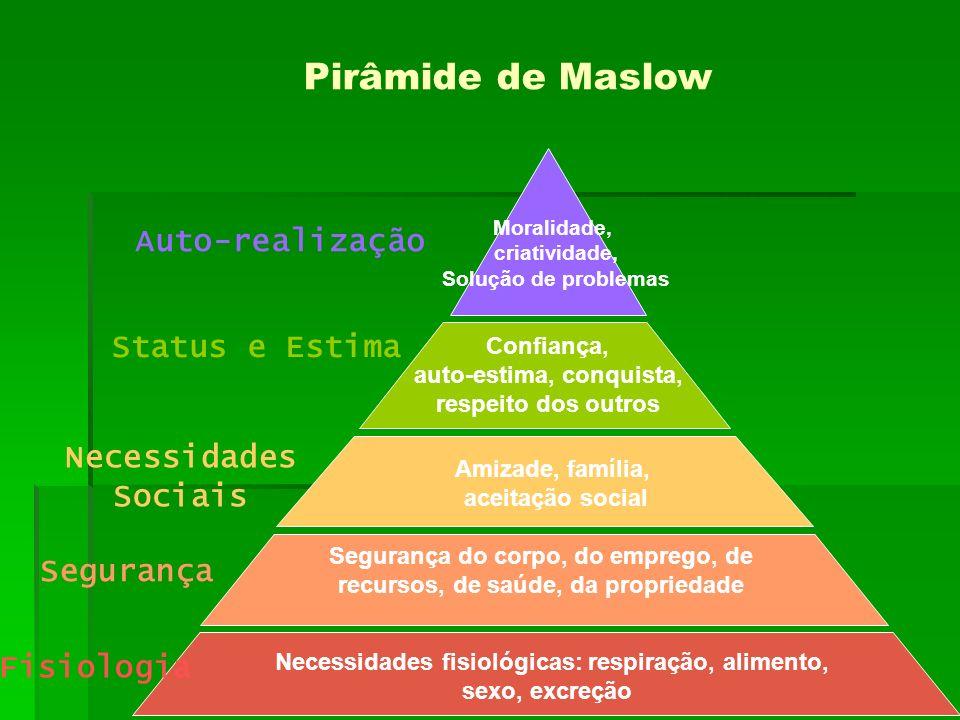 Pirâmide de Maslow Auto-realização Status e Estima Necessidades