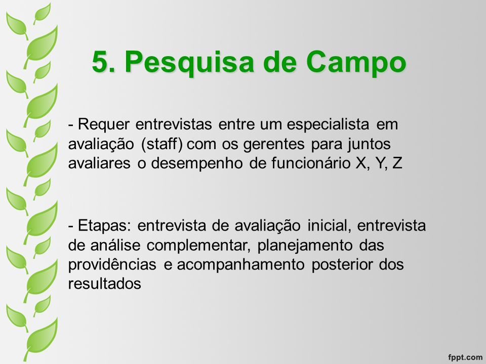 5. Pesquisa de Campo