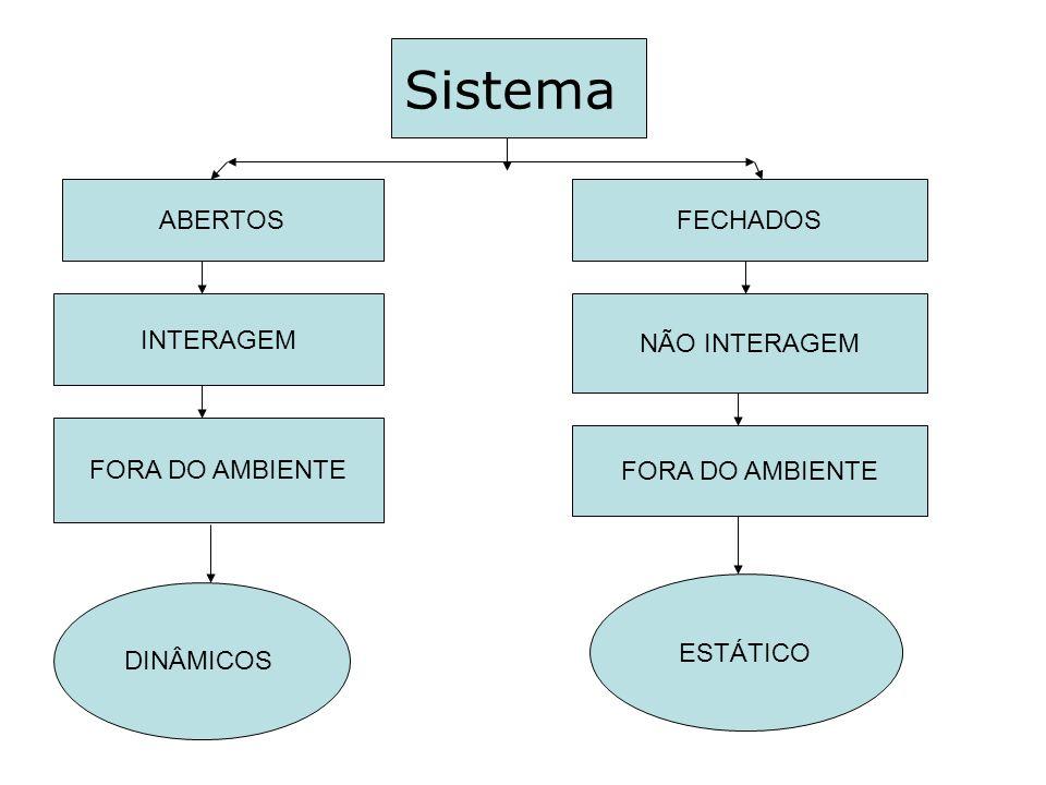 Sistema ABERTOS FECHADOS INTERAGEM NÃO INTERAGEM FORA DO AMBIENTE