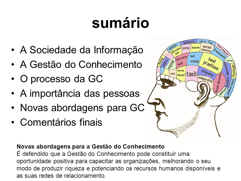 sumário A Sociedade da Informação A Gestão do Conhecimento