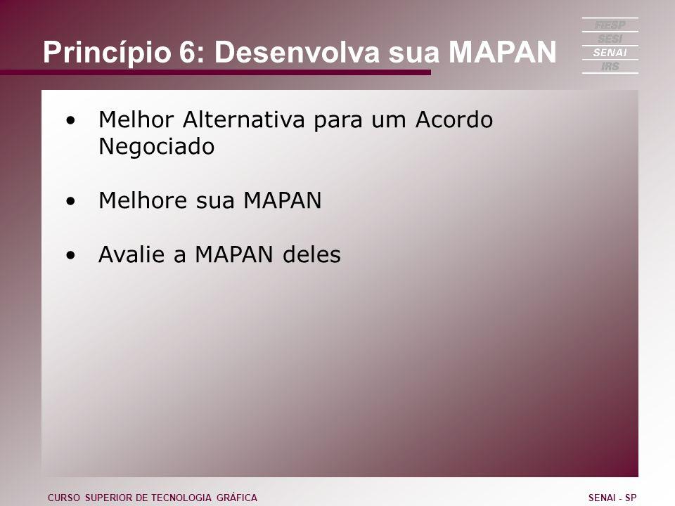 Princípio 6: Desenvolva sua MAPAN