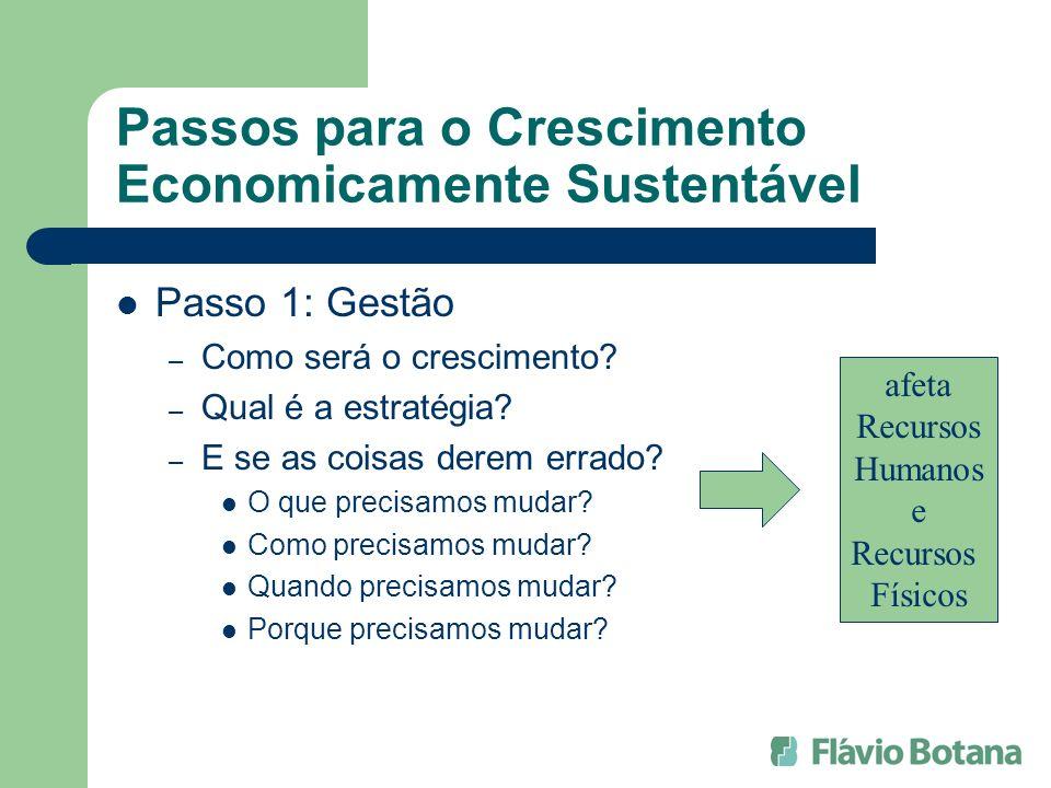 Passos para o Crescimento Economicamente Sustentável