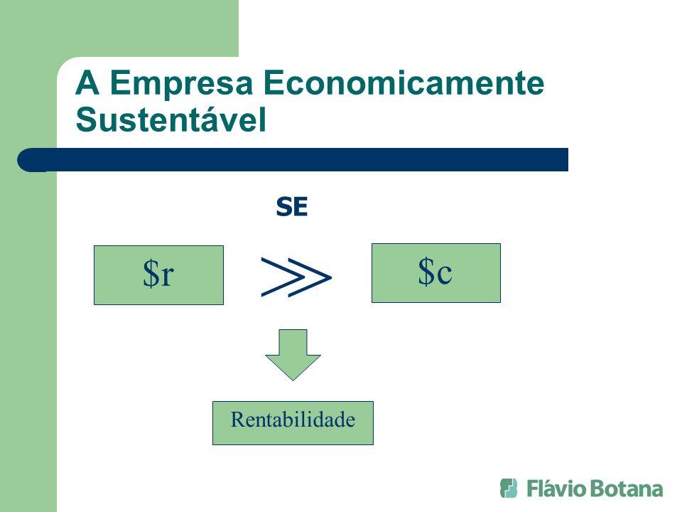 A Empresa Economicamente Sustentável