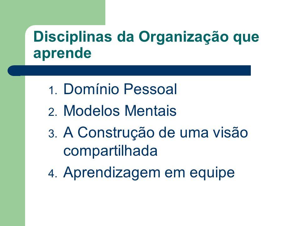 Disciplinas da Organização que aprende