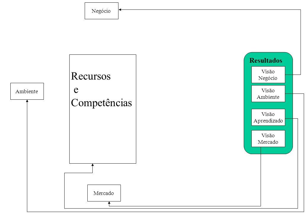 Recursos e Competências Resultados Negócio Visão Negócio Ambiente