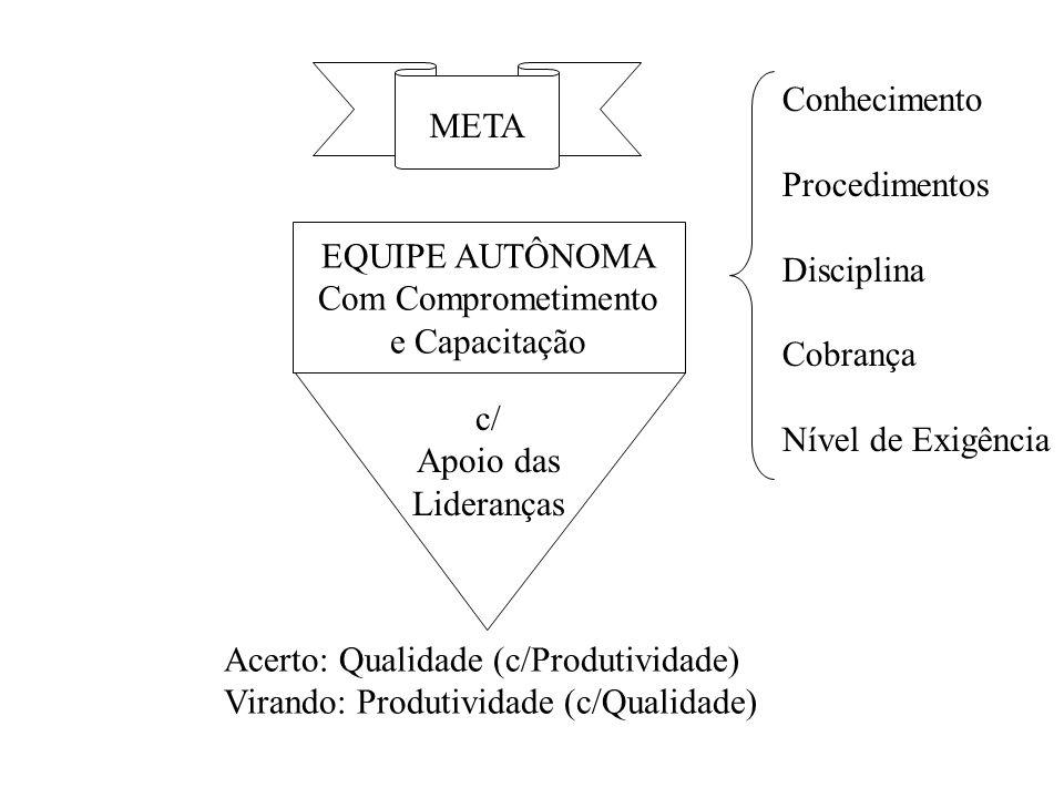Conhecimento Procedimentos. Disciplina. Cobrança. Nível de Exigência. META. EQUIPE AUTÔNOMA. Com Comprometimento.