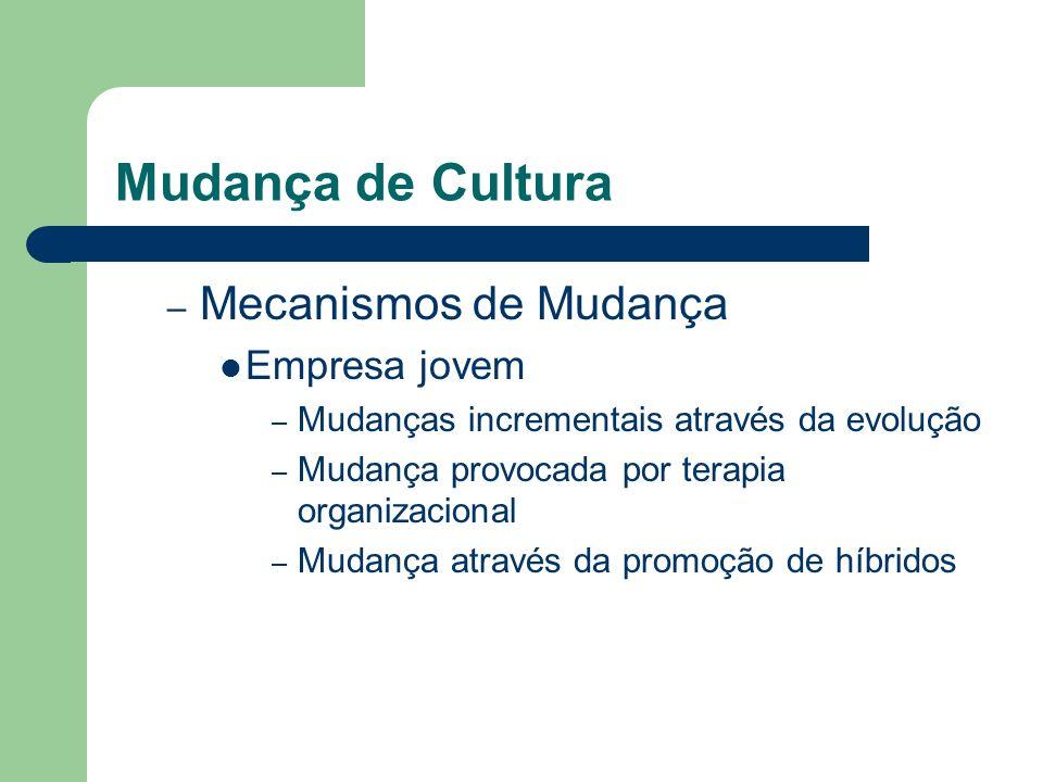 Mudança de Cultura Mecanismos de Mudança Empresa jovem
