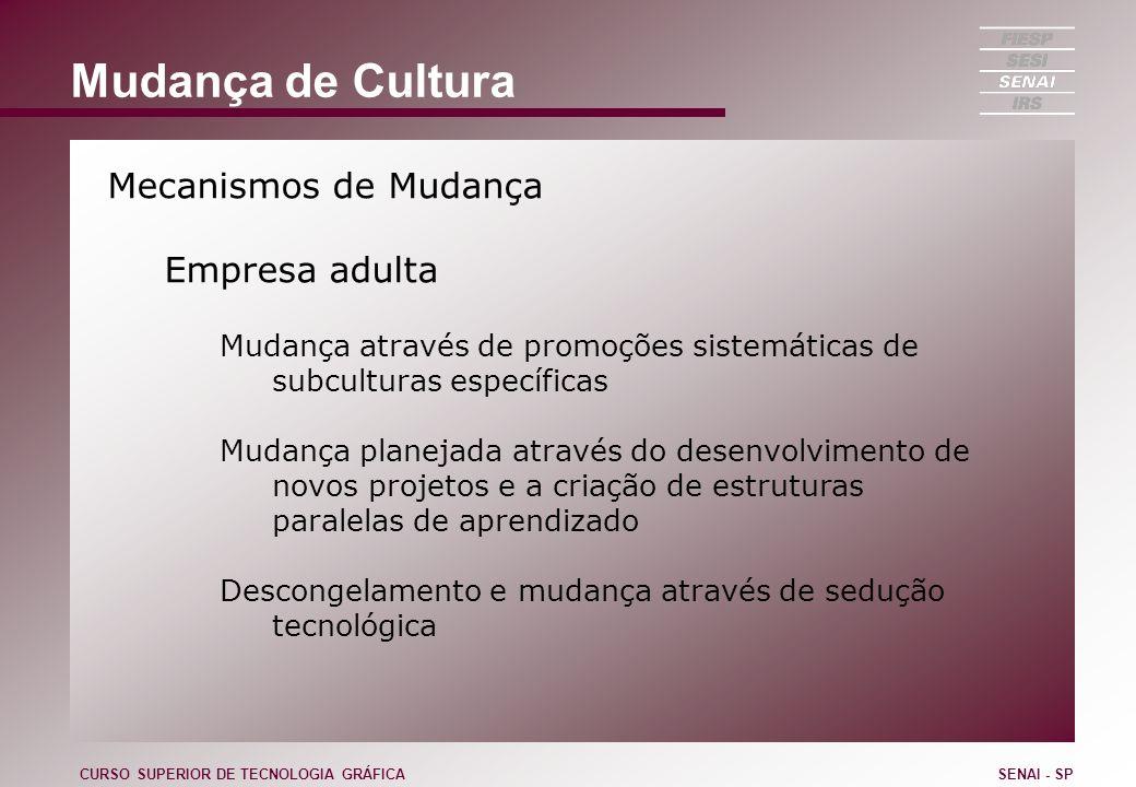 Mudança de Cultura Mecanismos de Mudança Empresa adulta