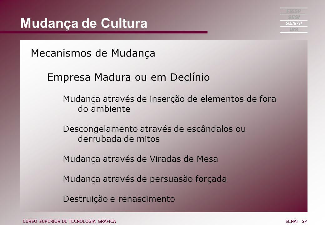 Mudança de Cultura Mecanismos de Mudança Empresa Madura ou em Declínio