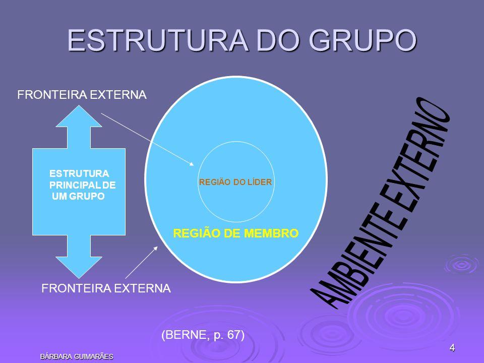ESTRUTURA DO GRUPO AMBIENTE EXTERNO FRONTEIRA EXTERNA REGIÃO DE MEMBRO